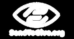 SendToGive_Logo_White_EYE-6359933.png