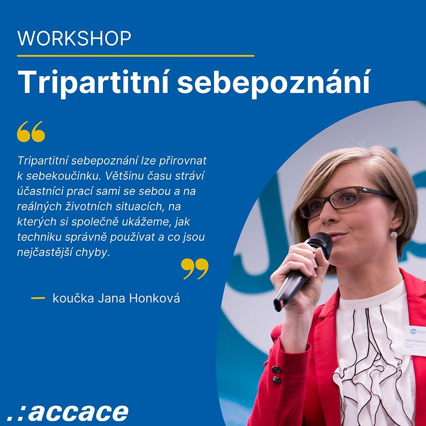 Tripartitní sebepoznání (in Czech)