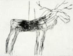 elg, koldnål, grafikk, Morten Hansen