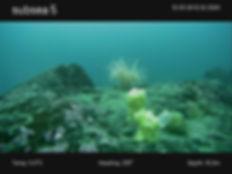Underwater drone 2.jpg