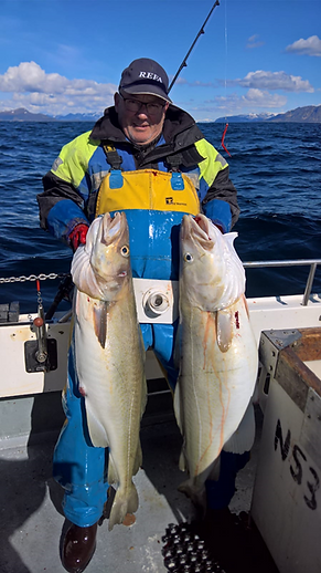 April - May 201919kg and 14kg cod.png