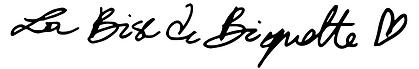 SignatureLBDB-vecto-recadré.png