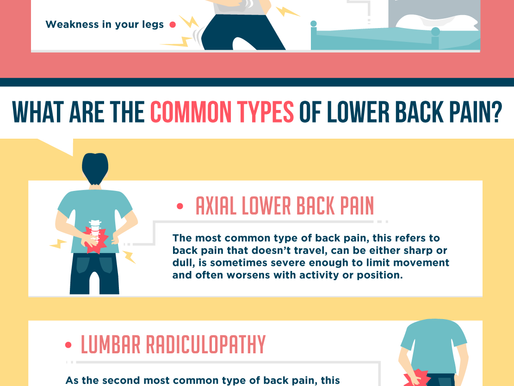 Lower Back Pain Explained