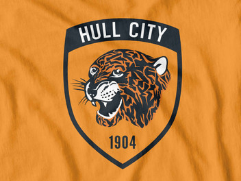 OPPOSITION FAN VIEW. HULL CITY