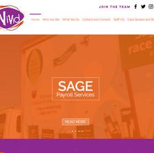 Vivid Website