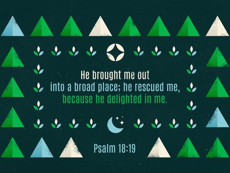 God's Delight
