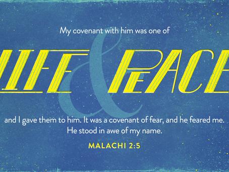 Purpose of God's Covenant