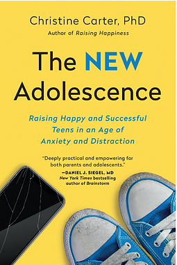 TheNewAdolescence_small.png