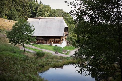 Der Langenbachhof: Hier findet 'glücklich mit fast nichts, dein Fastenerlebnis im Schwarzwald statt