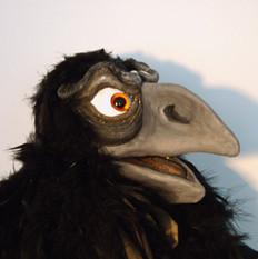 Raaf pop - Raven puppet