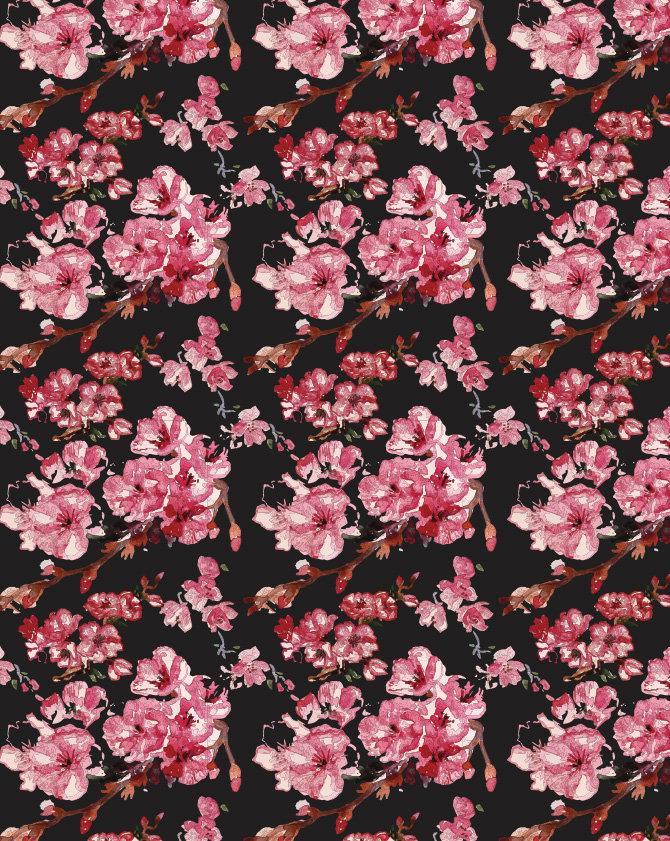 DD Background.jpg