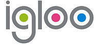 igloo logo.jpg