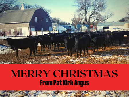 The Creator of My Cattle was Born in a Barn!