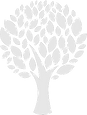 pngkit_tree-symbol-png_1062919_edited_ed
