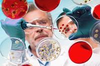 Focused senior life science professional