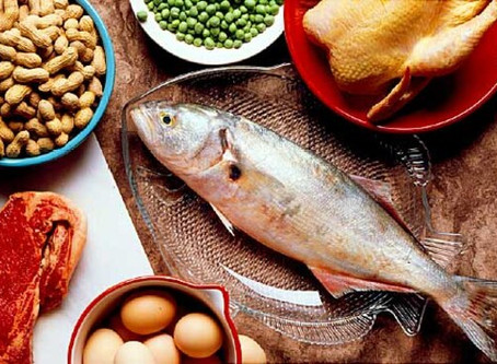 Different Types of Protein: What Should I Eat?