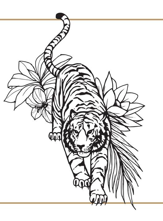 tijger foto.jpg