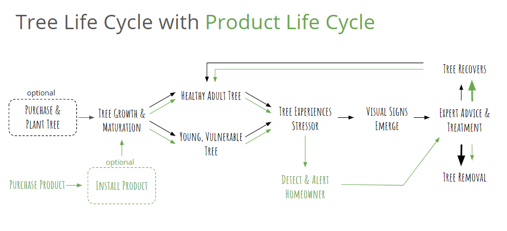 Tree life cycle journey map