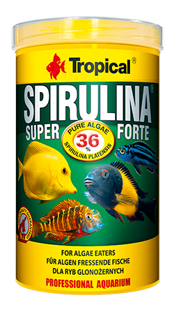 "Spirulina Super Forte ""Tropical"" 250ml (flocos)"