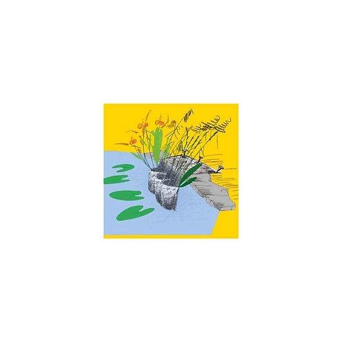 Bolsa p/plantas de lago