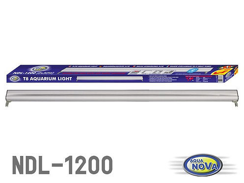 """NDL 1200 """"AQUA NOVA"""""""