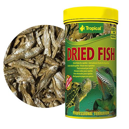 """Dried Fish """"Tropical"""" 100ml"""