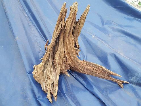 Ent Wood ( ao kilo )