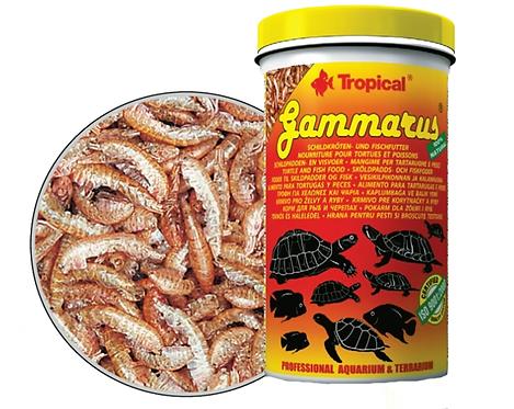 "Gammarus ""Tropical"" 250ml"