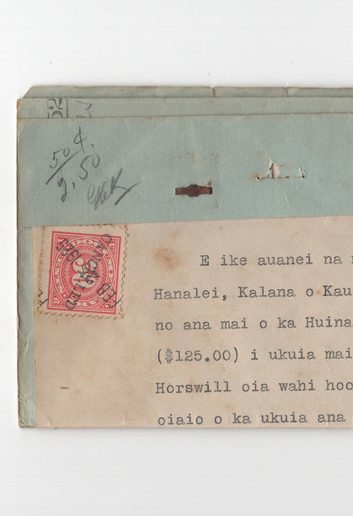 C494 Hanalei, Kauai Document