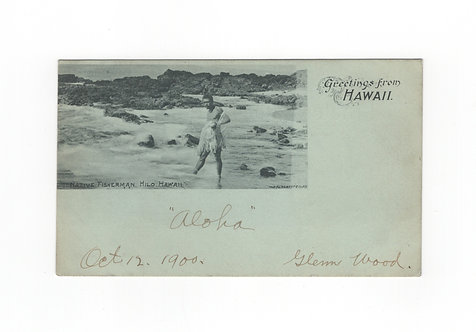 C410 1908 Picture Postcard