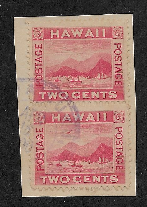 "16-33 Hawaii #81 ""Flying Goose"" Pair"