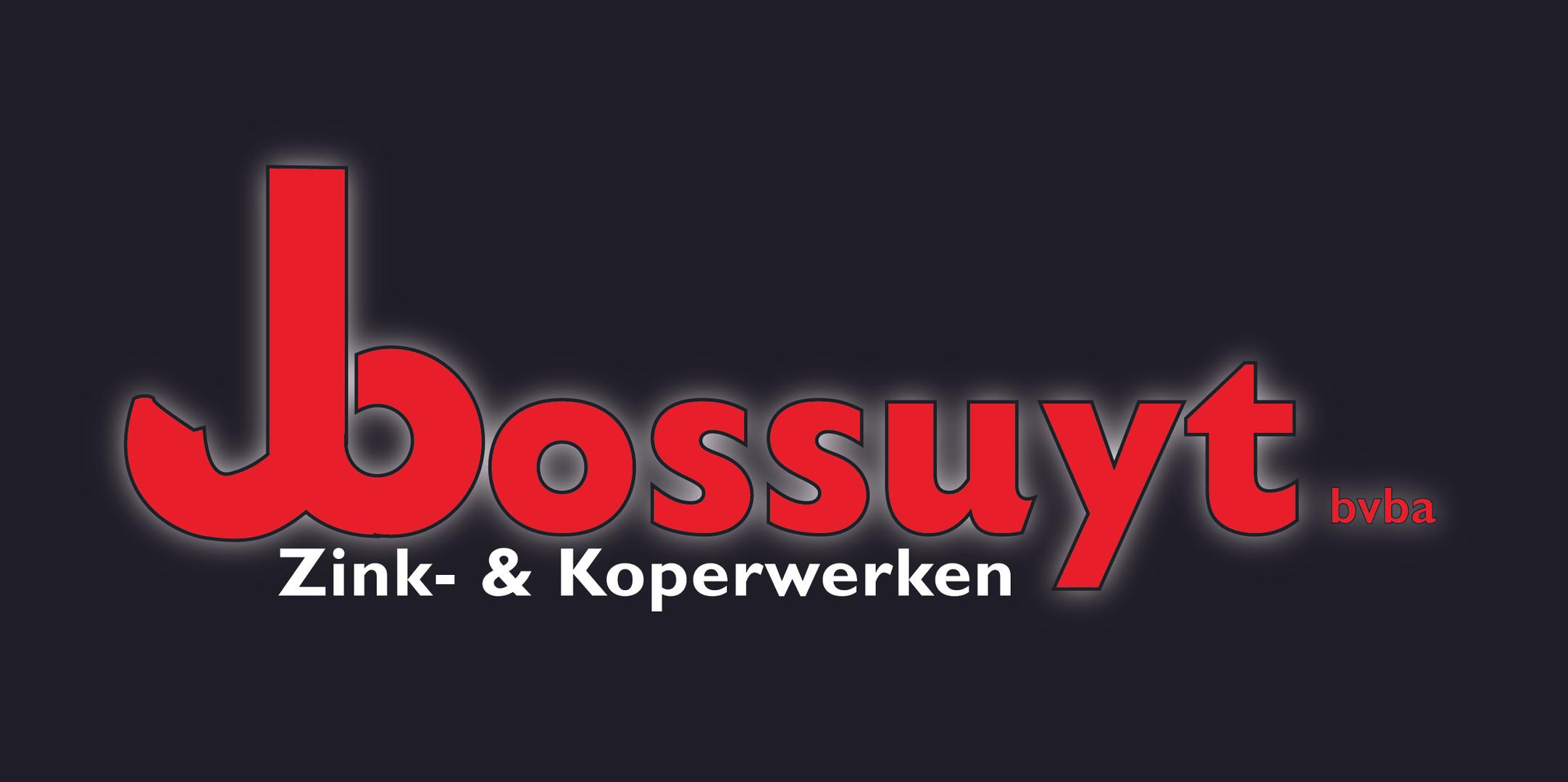 Bossuyt_zink&koperwerken2019.jpg