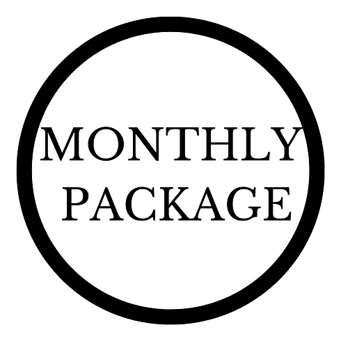 website monthly package pic.png