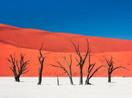safarikids-pics-setting-africa17.jpg