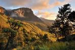 safarikids-pics-setting-africa20.jpg