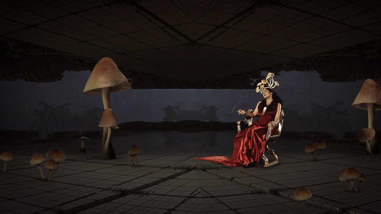 RECUT-mushrooms-.Still030.jpg