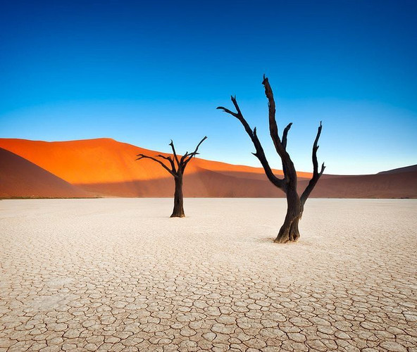 safarikids-pics-setting-africa3.jpg