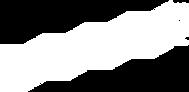 Duplikat Logo WHITE.png
