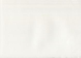 Duplikat WHITE CARTRIDGE copy.jpg