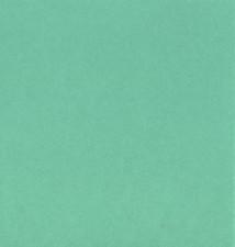 Duplikat Standard Colour Ocean.jpg