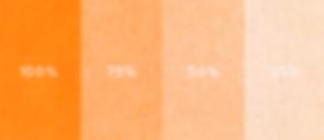 Duplikat Orange.jpg