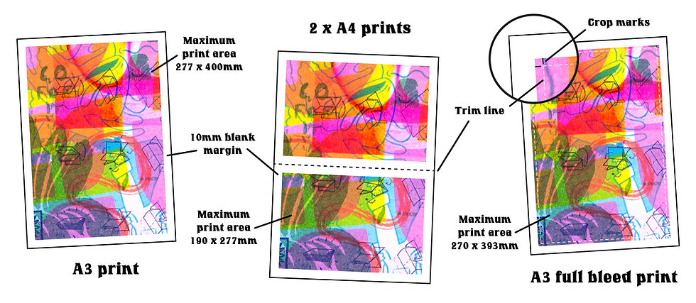 PRINT AREA Diagram-01.jpg