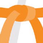 Orange Belt test