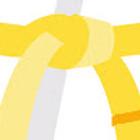 Yellow/Orange Stripe Test
