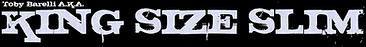 kss-logo.png