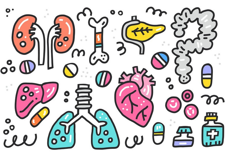 organ-transplantation-elements-vector-21