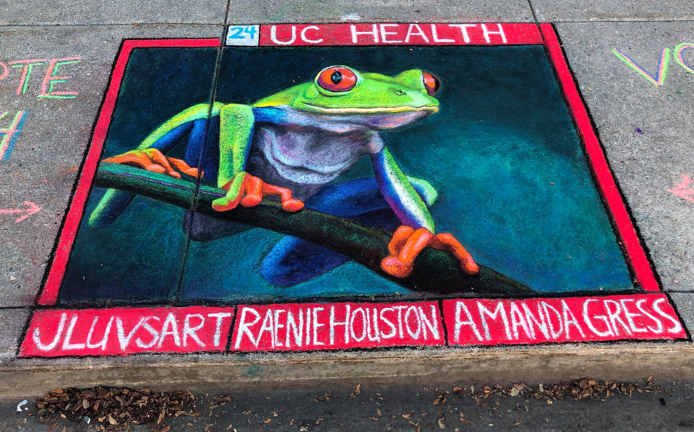 A sidewalk pastel painting of a colorful tree frog.