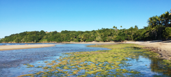 Boca da Barra