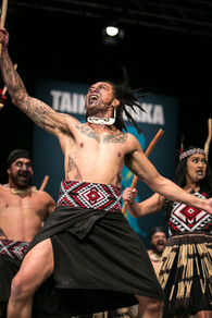 Ngā Pou o Taniwharau