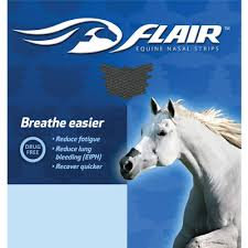 Flair Nasal Strips (6 Pack)